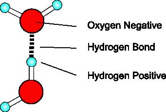 Hydrogen bonding - 23.1KB